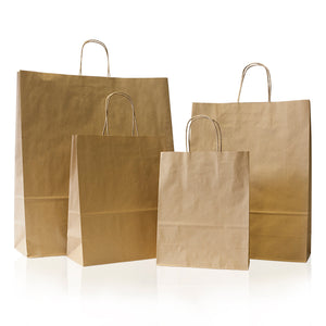 Recycled Paper Gift Bags with Twisted Handles