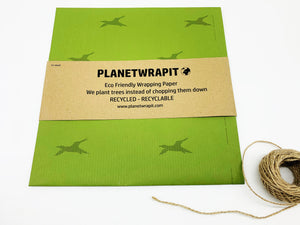 Bird of Flight Gift Wrap - Recycled Kraft Paper