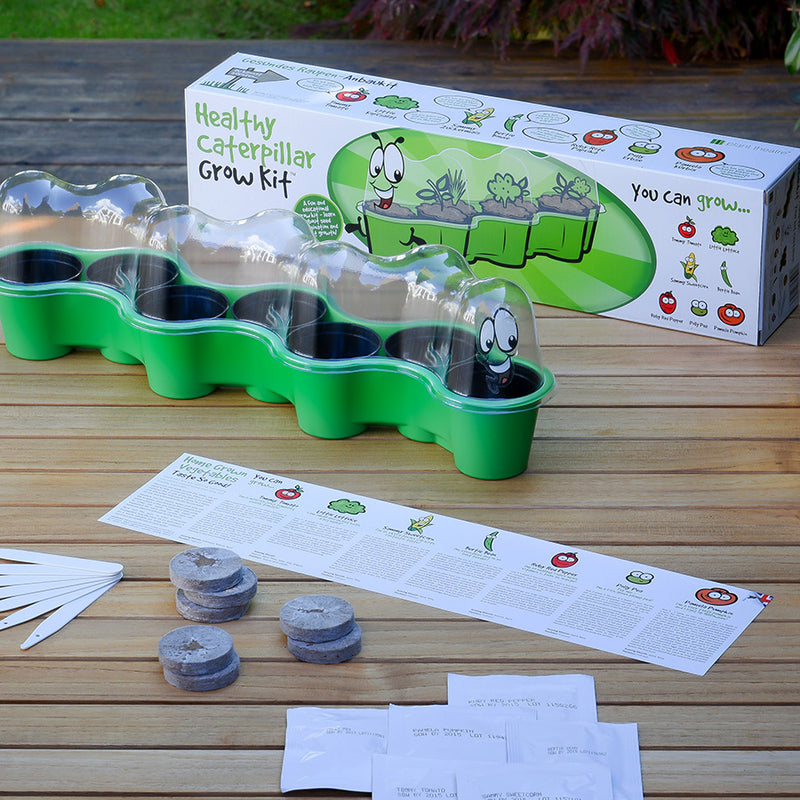 Healthy Caterpillar Grow Kit