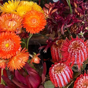 Paper daisies, kangaroo paw, red banksia and red leucadendrons natives