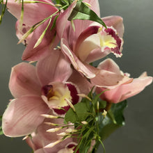 Load image into Gallery viewer, Jasmine is a bloom that you can even grow at home, its easy and will provide a wonderful scent in your garden. At Red Fragrance we can design an arrangement with its bloom or even help with a plant to help you grow your very own.