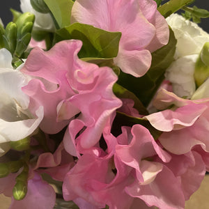 Sweet pea... What else do you need to say. The most soft, pretty and glorious flowers of the season. A treat for loved ones, that you may not want to give away.