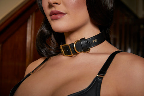 Luxury leather bondage collars