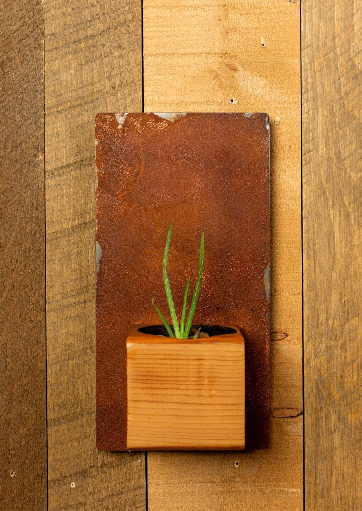 Cedar and Rusted-Steel Wall Planter