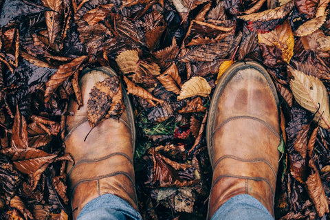 Boots Standing in Autumn Leaves