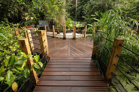 Decked Walkway At The Eden Project