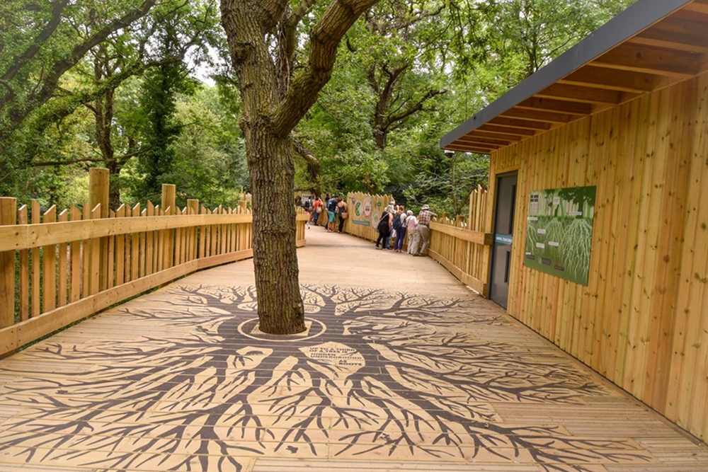Load image into Gallery viewer, Customised Non-Slip Decking at Bear Wood