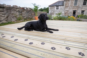 Load image into Gallery viewer, Dog Lying on Paw Print Decking