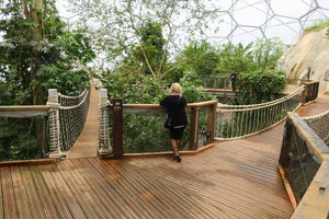 Load image into Gallery viewer, Yellow Balau Non-Slip Decking at The Eden Project