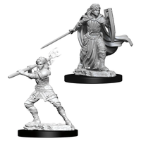 D&D Minis: Wave 10- Female Human Paladin