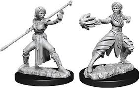 D&D Minis: Wave 10- Female Half-Elf Monk