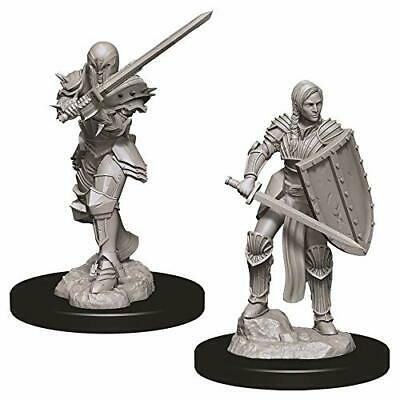 D&D Minis: Wave 9- Female Human Fighter