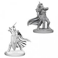 Pathfinder Minis: Wave 6- Female Knights / Gray Maidens