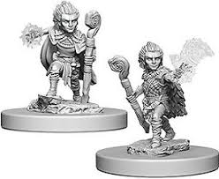 Pathfinder Minis: Wave 5- Gnome Male Druid