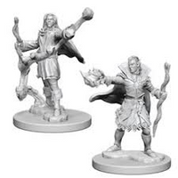 Pathfinder Minis: Wave 1- Elf Male Sorcerer
