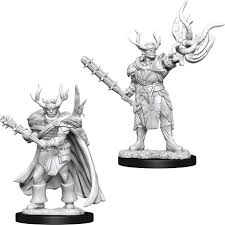Pathfinder Minis: Wave 10- Male Half-Orc Druid