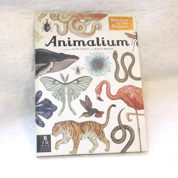 Animalium: Welcome to the Museum, Beautiful Large Format Book, Ages 8-adult