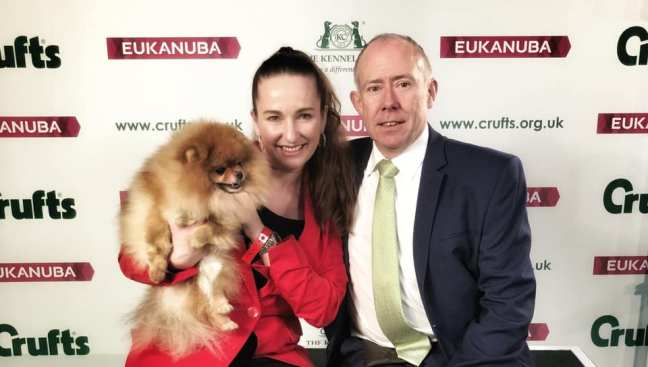 Bella Klein´s Pomeranians at CRUFTS 2019