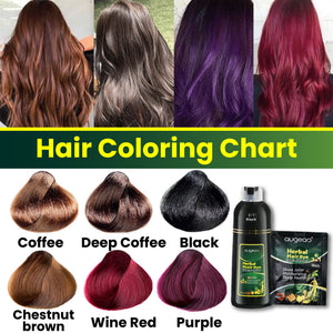 10 Mins Herbal Hair Darkening Shampoo 1688