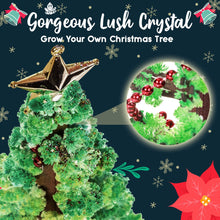 Load image into Gallery viewer, Growing Crystal Christmas Tree 1688