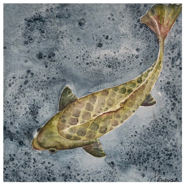 Koi #1 - Watercolor by Lexi Grenzer