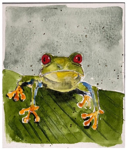Frog #3 - Watercolor by Lexi Grenzer