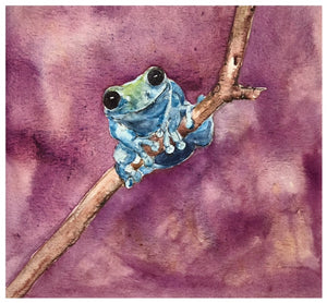 Frog #1 - Watercolor by Lexi Grenzer