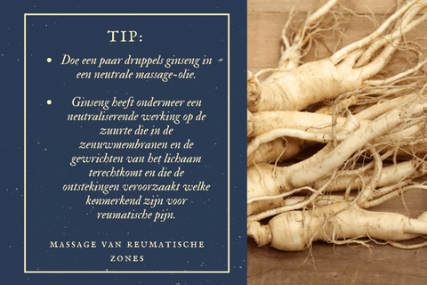 A massage tip against rheumatic pains with ginseng