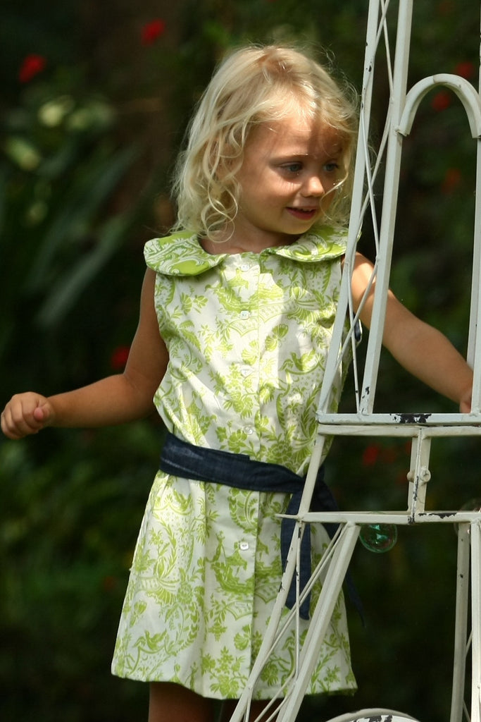 Toddler Girl's Green Toile Print Dress with Denim sash by Max & Dora