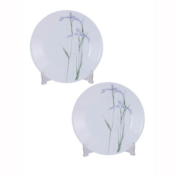 Corelle-2pcs-Medium Plate-Shadow Iris