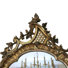 Load image into Gallery viewer, Stunning Gilt 19th Century Wall Mirror