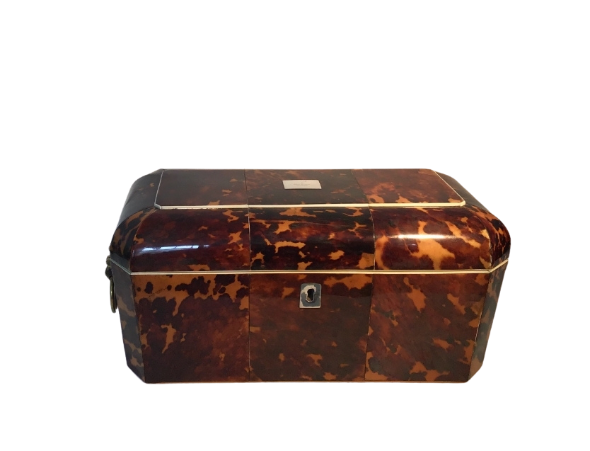 Regency Tortoiseshell tea caddy with glass mixing bowl and lions head handles