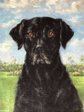 "Load image into Gallery viewer, Oil Painting Portrait ""Black Dog Labrador Retriever"" After John Murray Thomson"