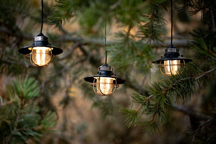 Edison String Lights (Bronze)