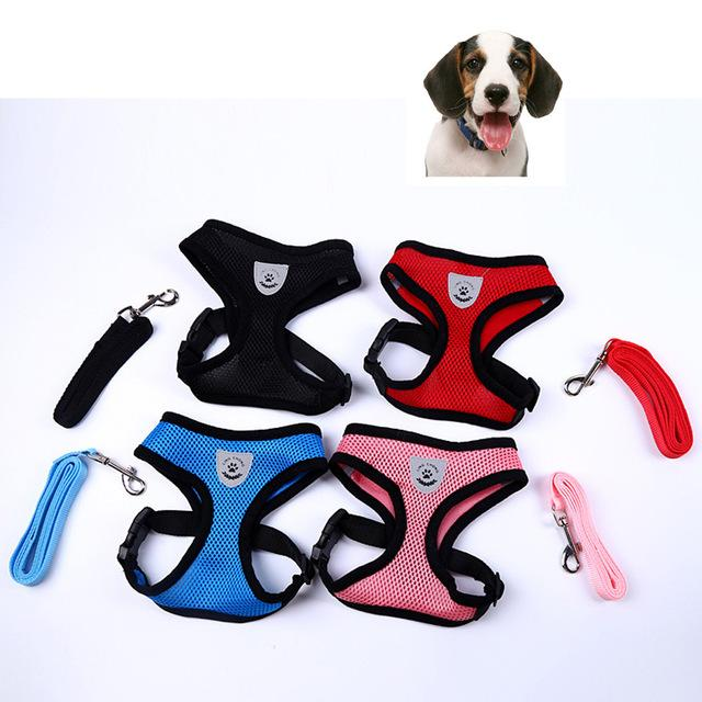 Adjustable Harness with Leash - Junky Pets