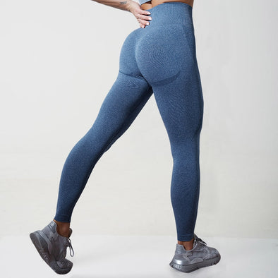 Energy Seamless Fitness Tights