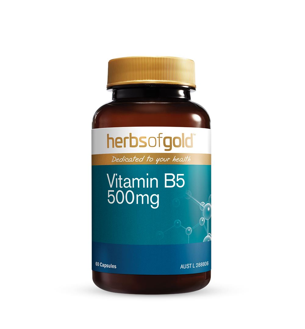 Herbs Of Gold Vitamin B5 500mg 60C