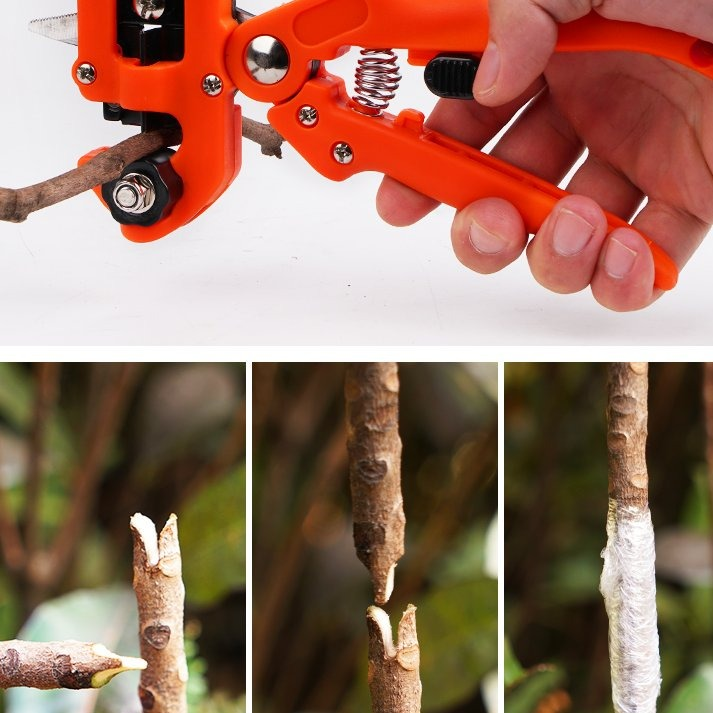 Professional Garden Grafting Tool Set For Fruit Trees Pruner Kit Scissors