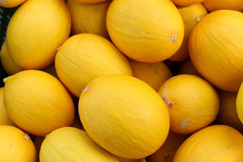 YELLOW MELON - Bens Greengrocers