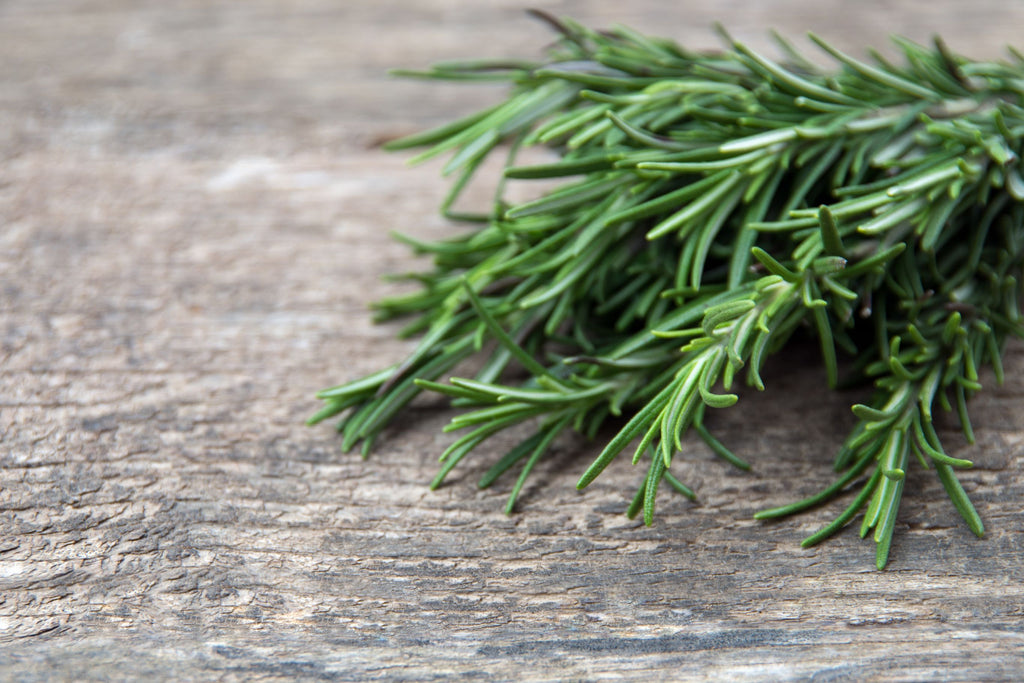 ROSEMARY - Bens Greengrocers