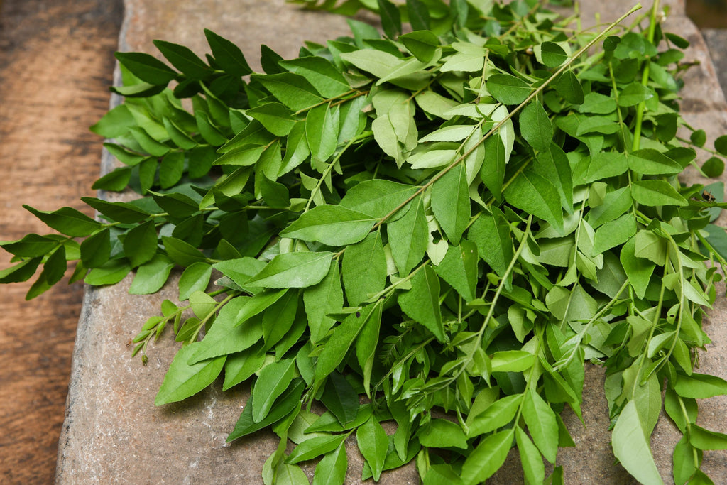 CURRY LEAVES - Bens Greengrocers