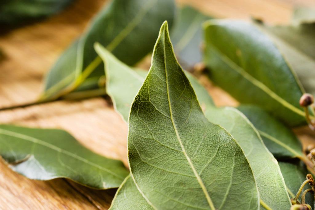 BAY LEAVES - Bens Greengrocers