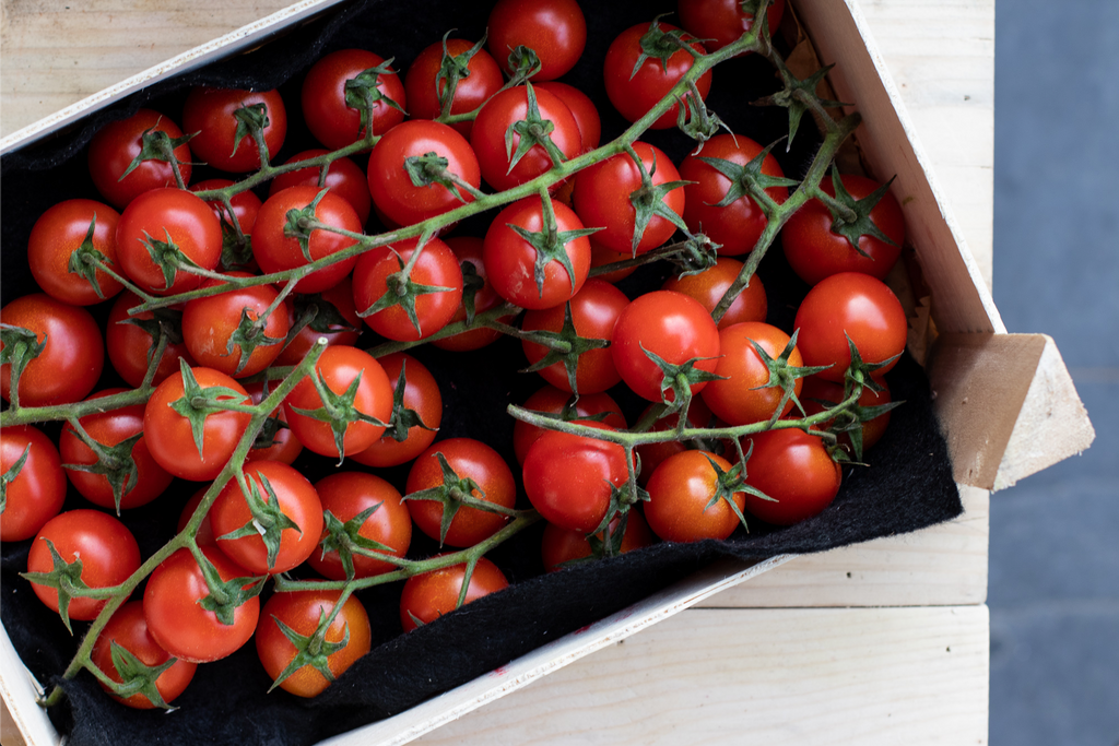 CHERRY TOMATOES - Bens Greengrocers
