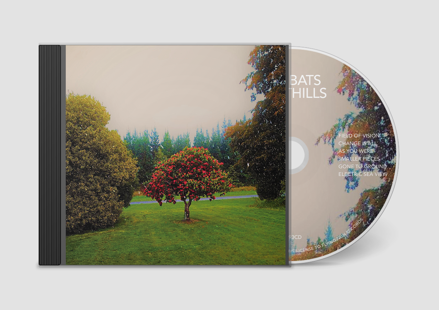 Bats, The - Foothills (2020)