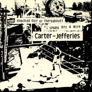 FN236 Shayne Carter & Peter Jefferies - Knocked Out Or Thereabouts ‎(1992)
