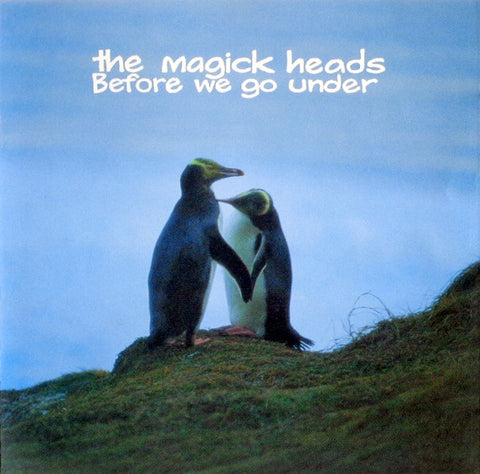 FN290 The Magick Heads - Before We Go Under (1995)