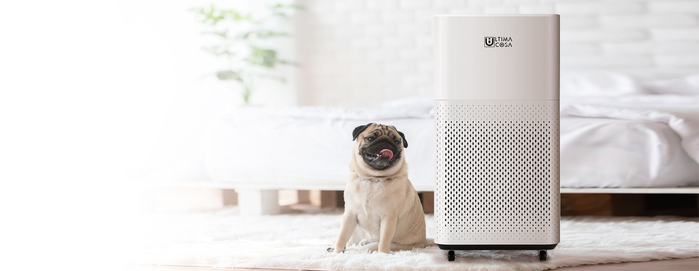 The Refreshingly Thoughtful Air Purifier.