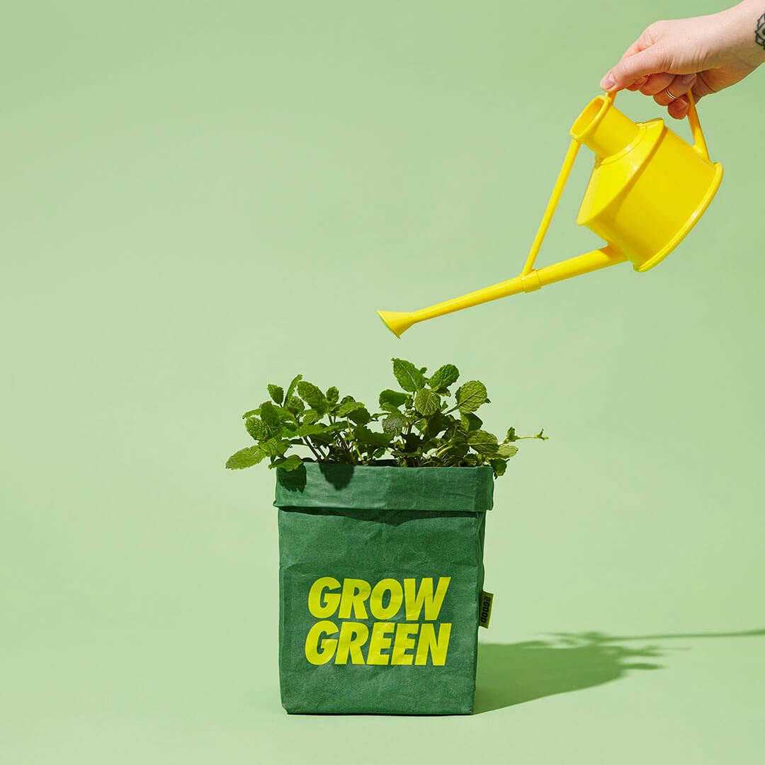 Get Growing - Home Growing Hero Kit