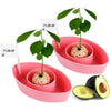 2PCS Avocado Seed Planting Bowl ,Sailboat Avocado Tree Growing Kit with Indoor Balcony Planting、Garden Gifts、Kitchen Gifts、Practical Gardening Gifts for Women.