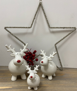 Christmas Decoration | Rodney Reindeer